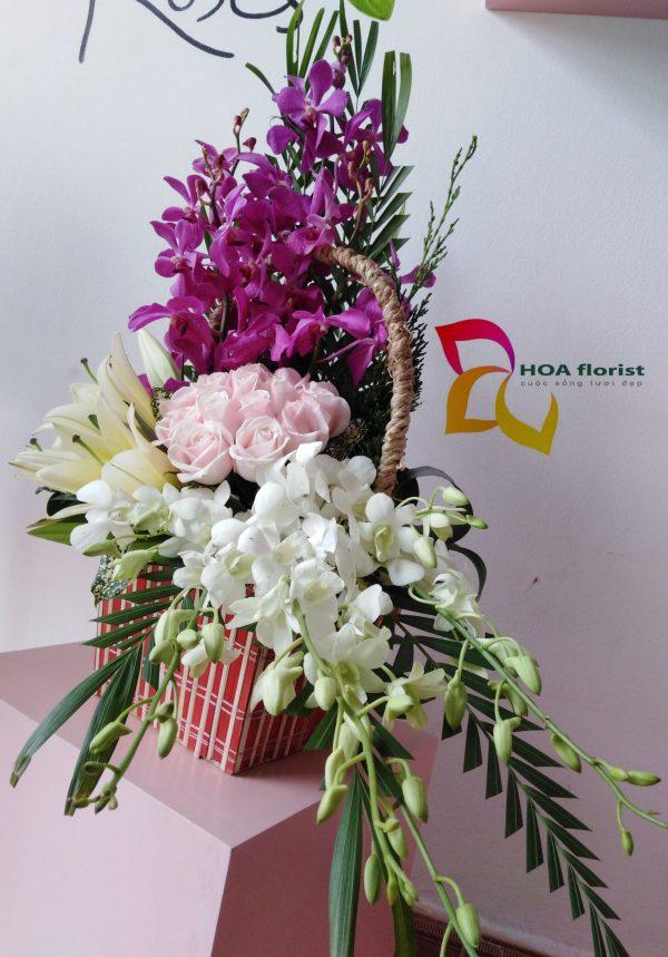 chân tình, giỏ hoa, hoa tươi, hoa đẹp, hoa hồng, hoa lan, hoa ly