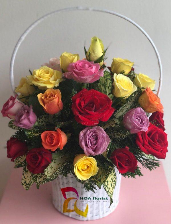 cầu vồng, lẳng hoa, hoa tươi, hoa hồng, hoa hồng đỏ, hoa hồng tím, hoa hồng vàng, hoa hồng cam, lẳng hoa hồng, hoa hồng đẹp