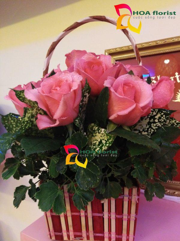 hồng sen, hoa tươi, hoa hồng, lẳng hoa, điện hoa trực tuyến, đặt hoa trực tuyến