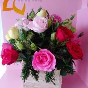 tâm tư, hoa tươi, lẳng hoa, lẳng hoa hồng, hoa hồng đỏ, hoa cát tường