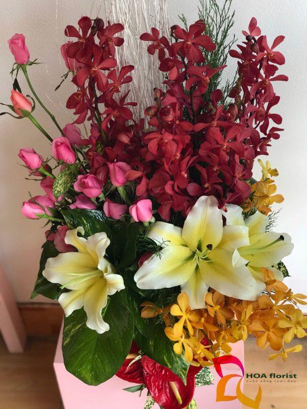 tỏa nắng, hoa tươi, hoa monaca, hoa lily, hoa ly, lẳng hoa, hoa khai trương, hoa sự kiện, hoa đẹp